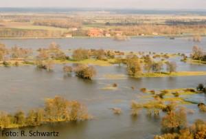 UTF-8''Überflutung von René mit Autorenschaft